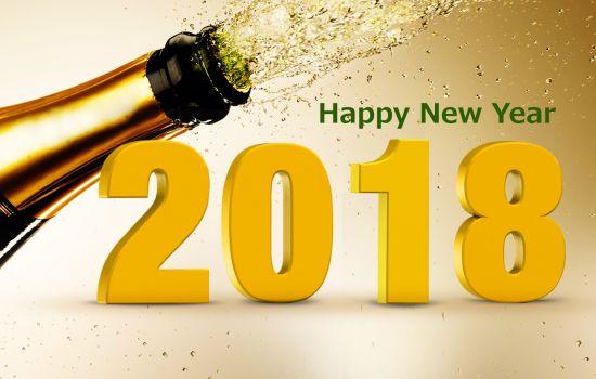 BCN Nieuwjaarsreceptie 2018 1
