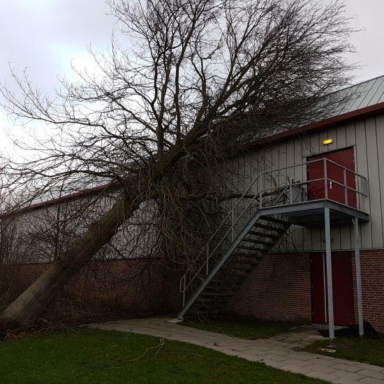 Parkzoomhal gesloten ivm beschadiging als gevolg van westerstorm 1